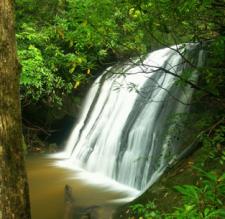 Frolictown Creek Falls